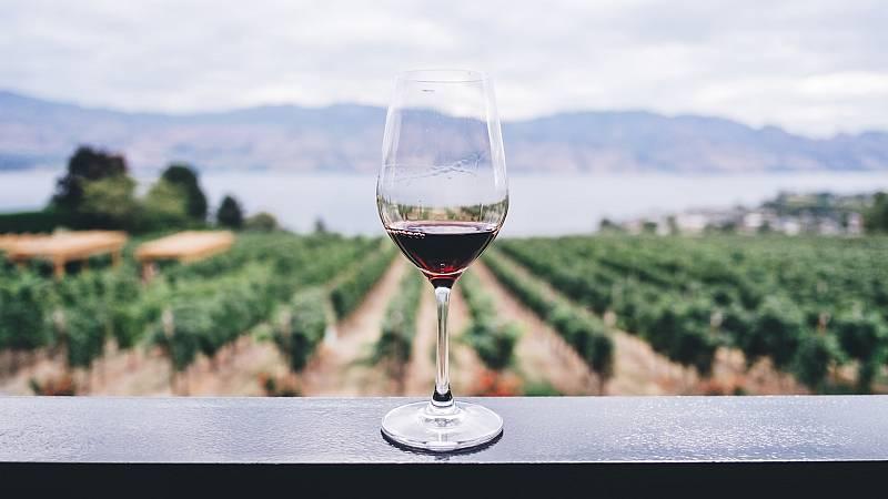 Gente despierta - Amor por el vino, Cosas de la vida, con Luismi Pascual