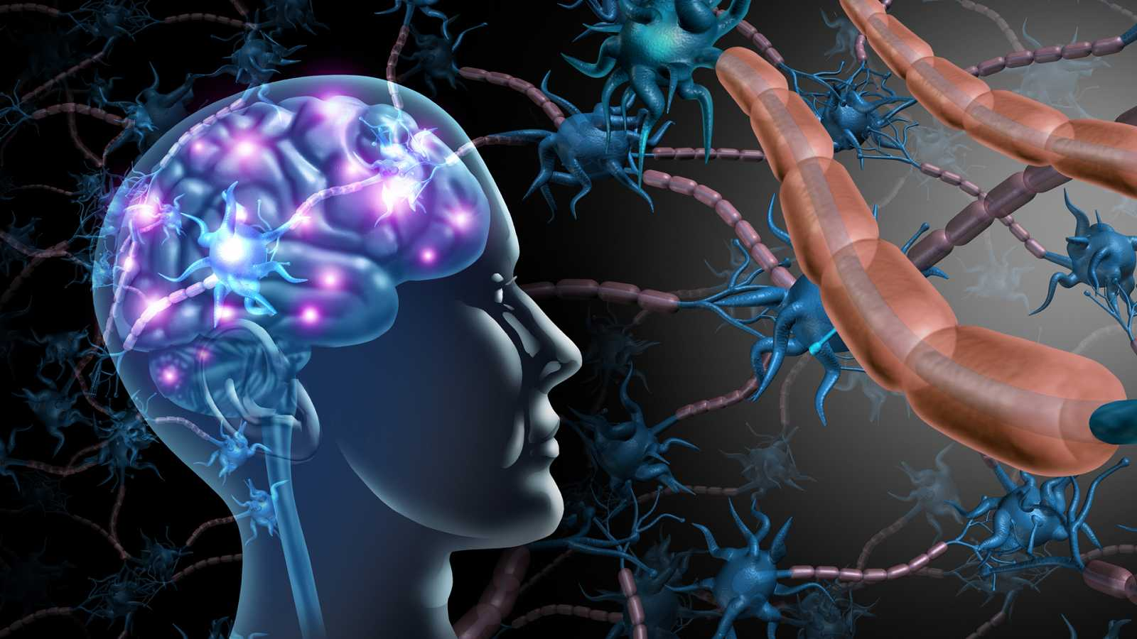 A golpe de bit - Los misterios del cerebro - 27/11/20 - Escuchar ahora