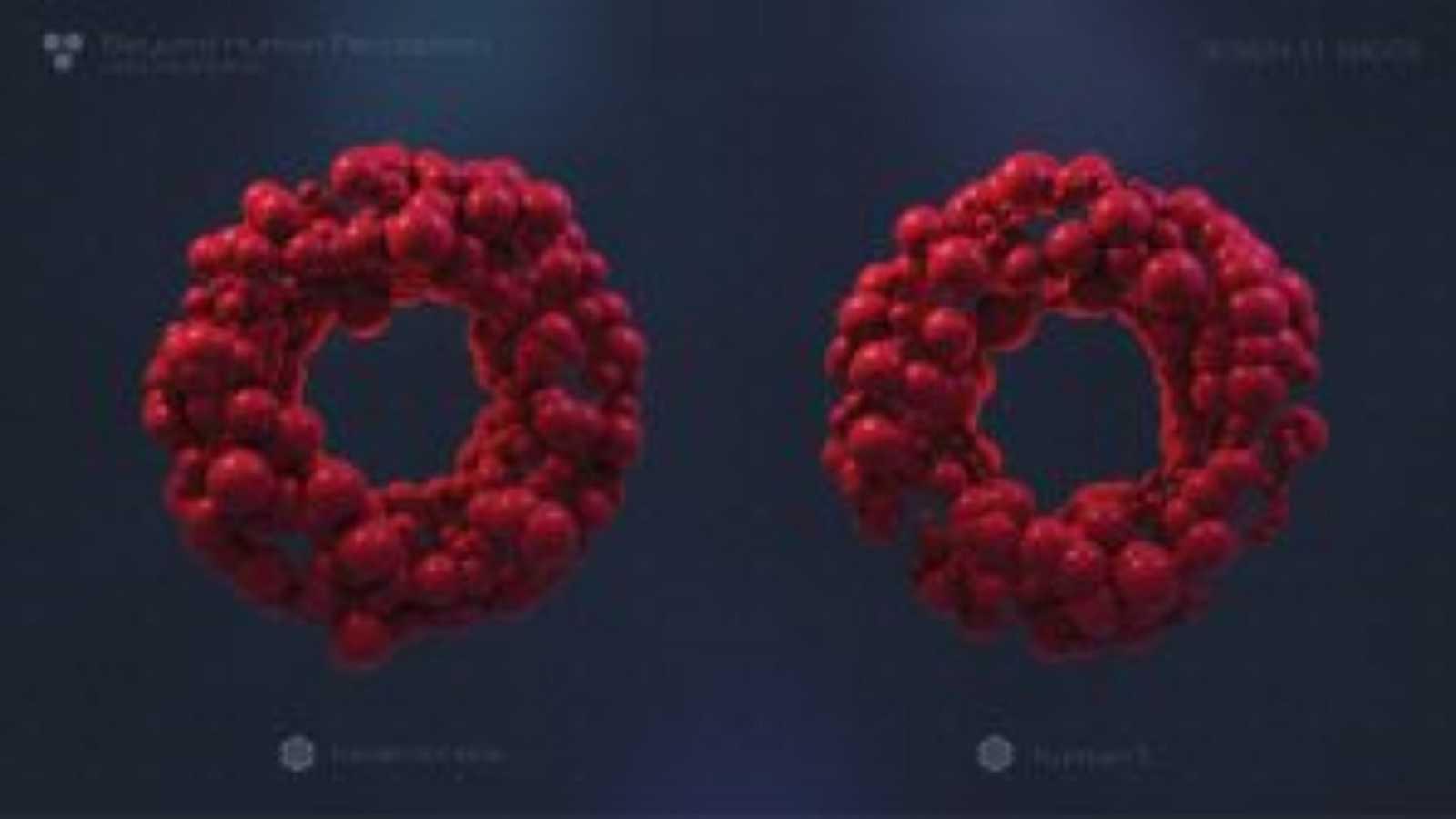 Fluido Rosa - Arte y Neurotecnología, Dart Festival y Marbella Gallery - 30/11/20 - escuchar ahora