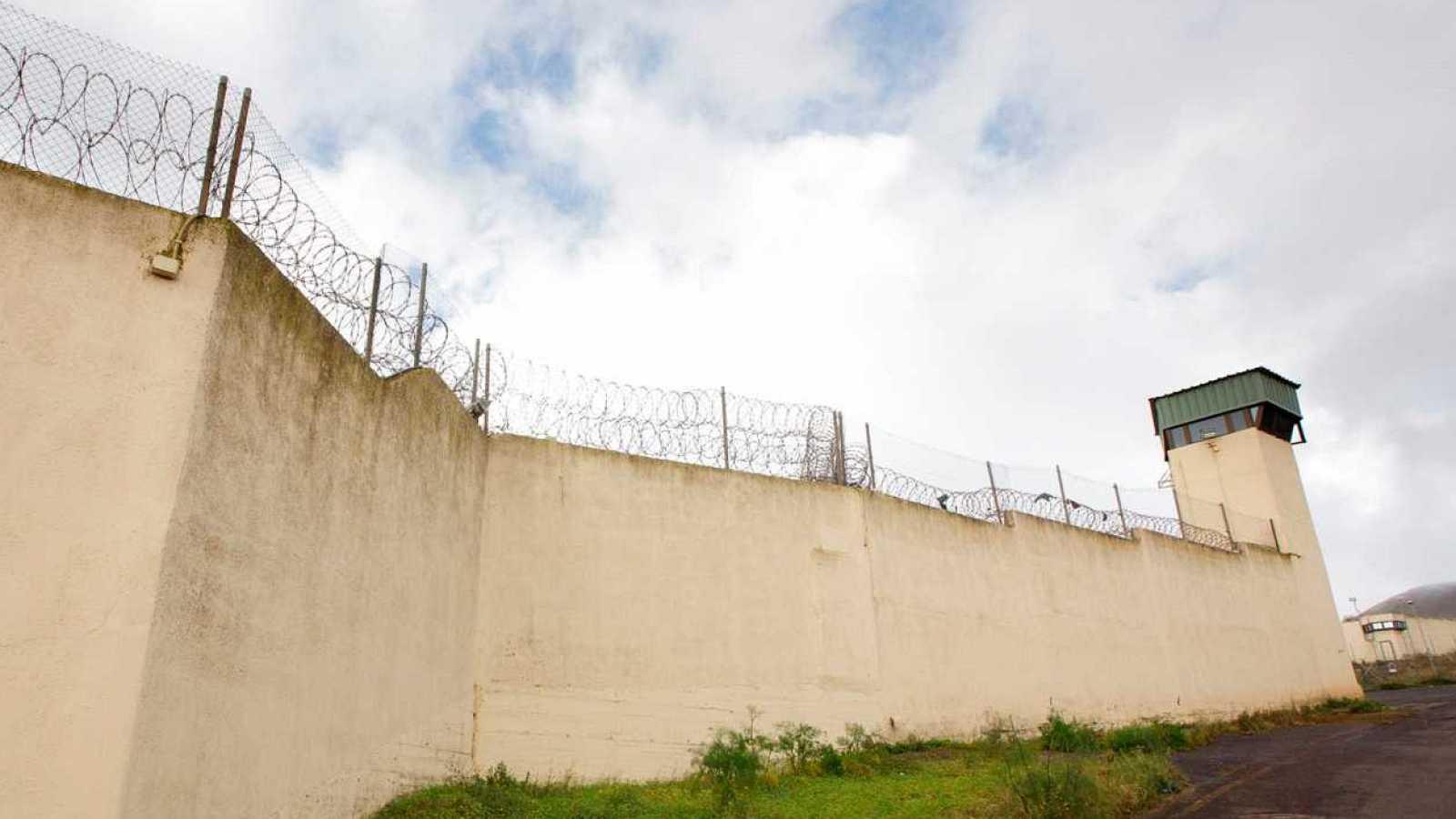 El gallo que no cesa - ¿Cómo reeduca a los  presos el programa PIDECO? - Escuchar ahora
