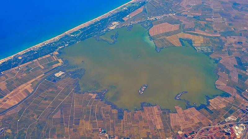 Vida verde - Albufera. Lagunas costeras desapareciendo - 12/12/20 - escuchar ahora