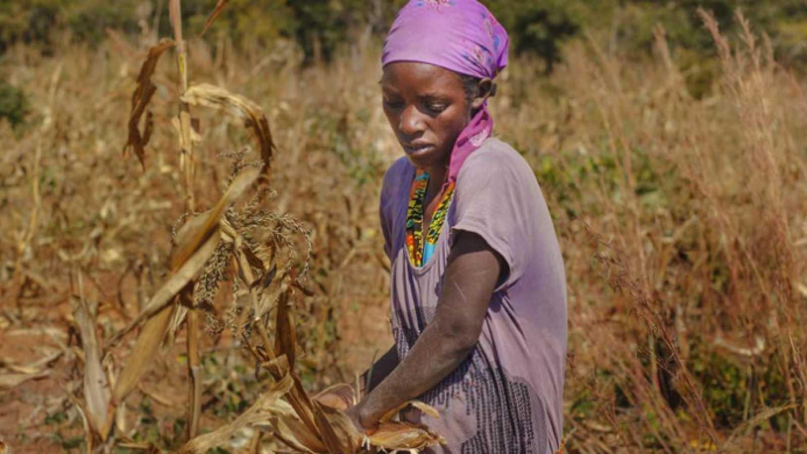 África hoy - África, la amenaza de la pérdida de tierras en Angola, proyecto de Fundación Codespa - 15/12/20 - escuchar ahora