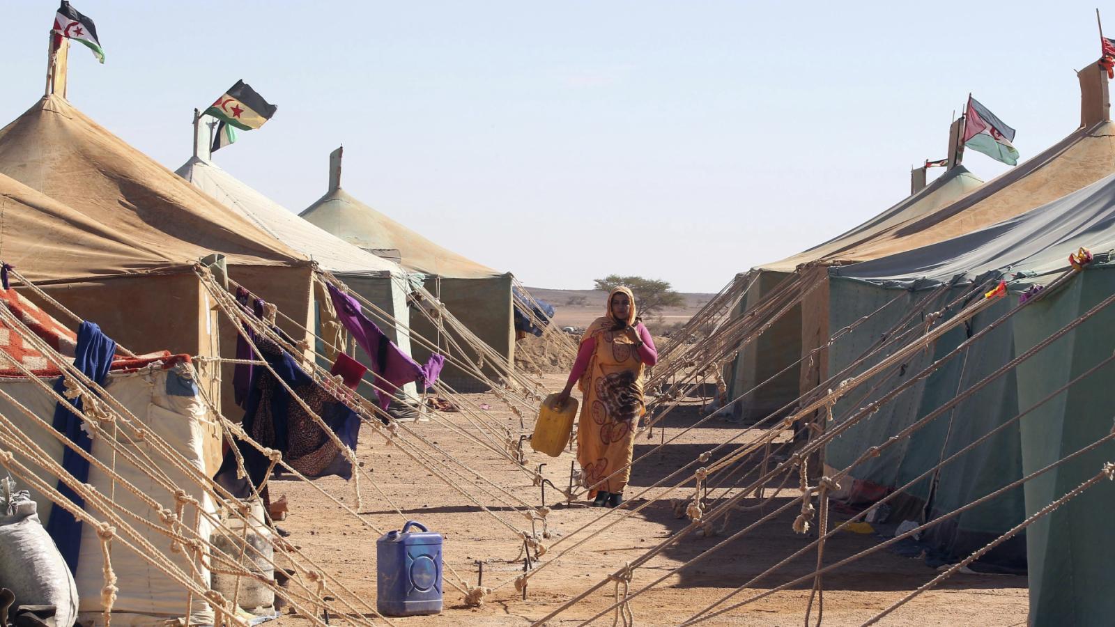Reportajes RNE - Sáhara Occidental: 45 años de abandono - Escuchar ahora