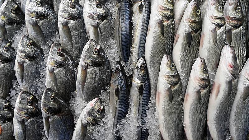 """Españoles en la mar - """"Hay que profundizar en el conocimiento científico de las especies pesqueras y hacerlo cada vez más riguroso"""" -18/12/20 - Escuchar ahora"""