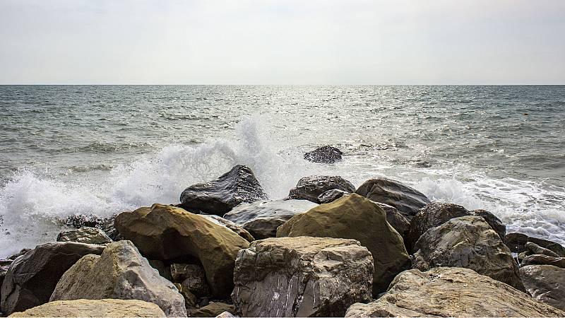 Españoles en la mar - Los virus marinos - 08/01/21 - Escuchar ahora