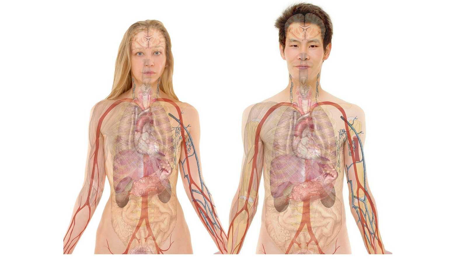 Tarde lo que tarde - Filomena no interrumpe los trasplantes - 14/01/21 - escuchar ahora