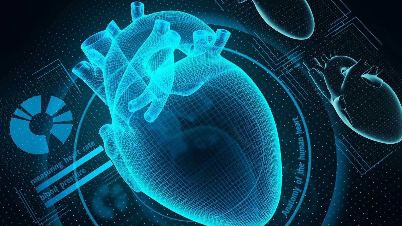 El gallo que no cesa - ¿Ha empeorado nuestra salud cardiovascular? - Escuchar ahora
