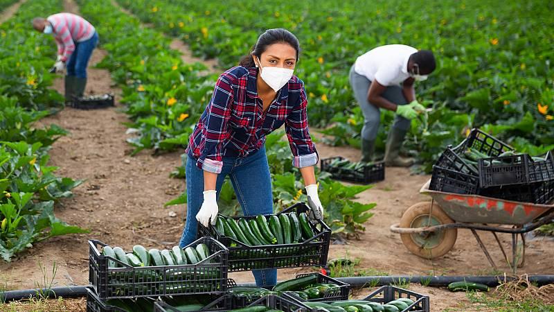 Más cerca - La reforma de la ley de la cadena alimentaria - Escuchar ahora