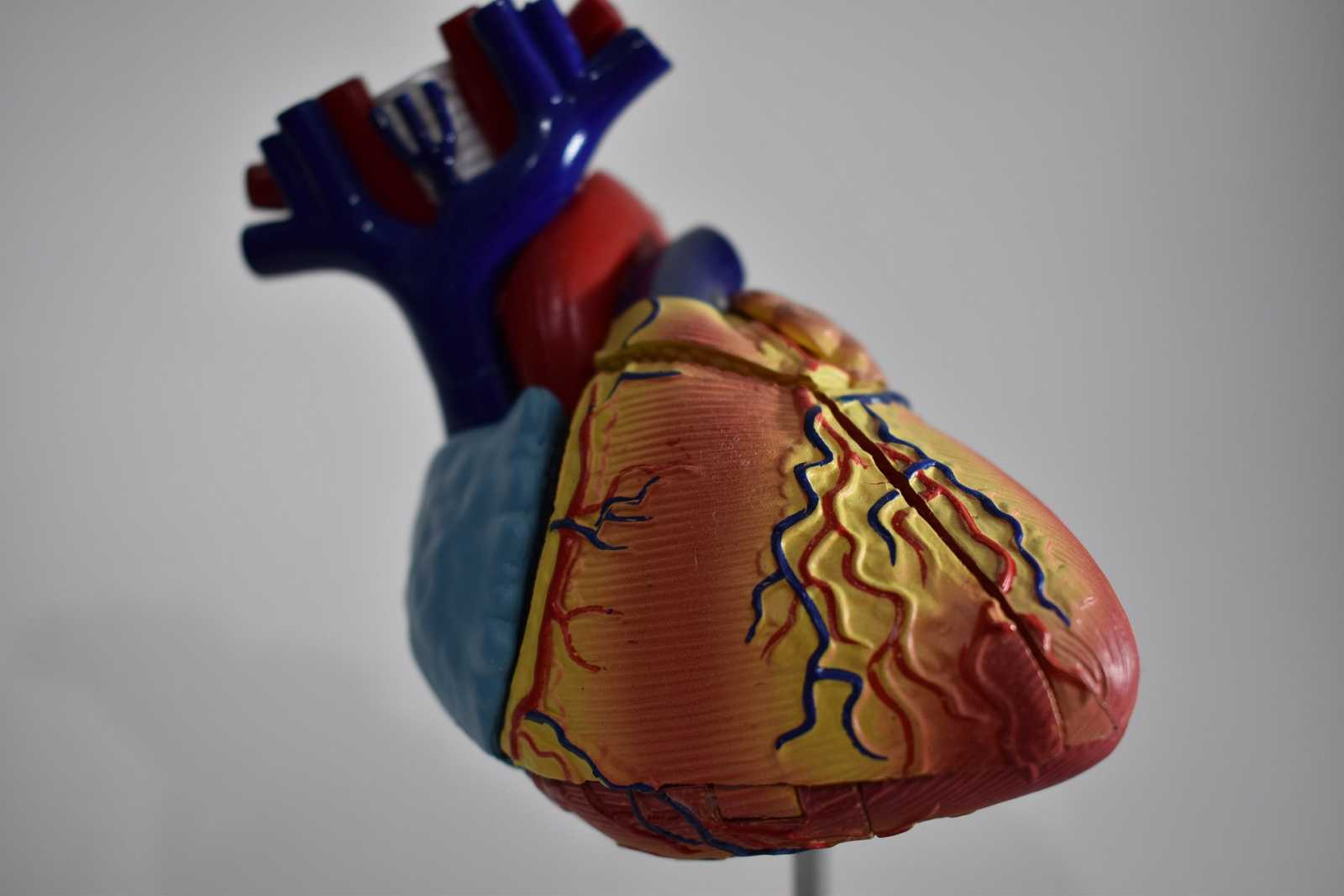 El laboratorio de JAL - El corazón. Ese gran desconocido - 28/01/21 - Escuchar ahora