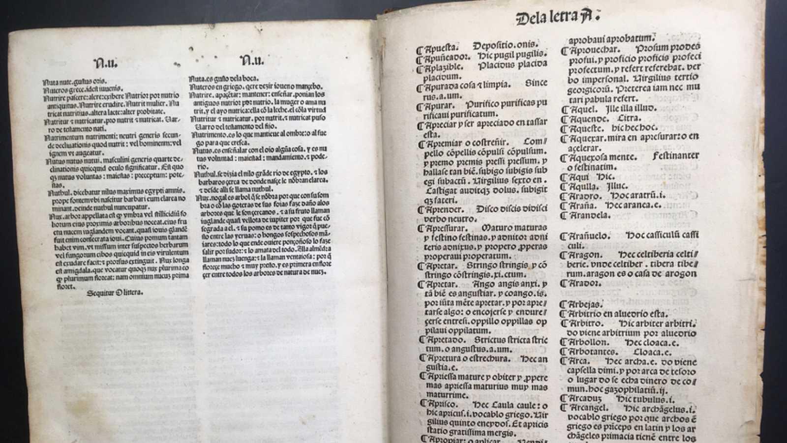 Un idioma sin fronteras - El diccionario más antiguo - 30/01/21 - escuchar ahora