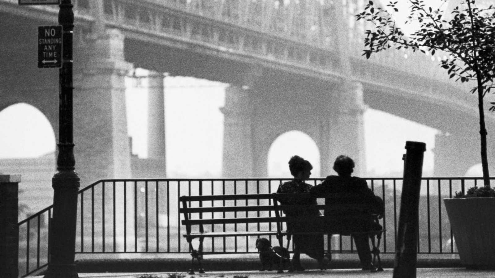 Todos somos sospechosos - New York, New York - 11/02/21 - escuchar ahora