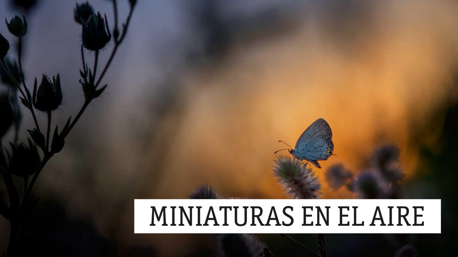 Miniaturas en el aire - En enséñame a mirar como tú miras - 25/02/21 - escuchar ahora