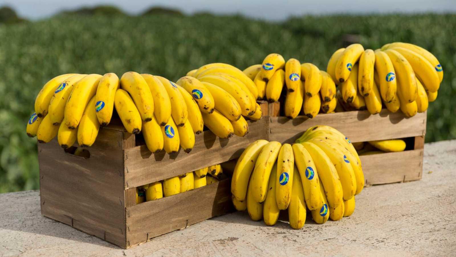 En clave Turismo - Plátano de Canarias, saludable y nuestro - 26/02/21 - escuchar ahora