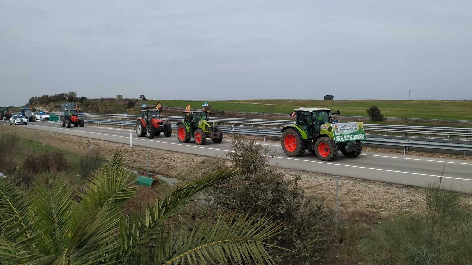 Más cerca - Tractorada en defensa del cultivo del tabaco en Extremadura - Escuchar ahora