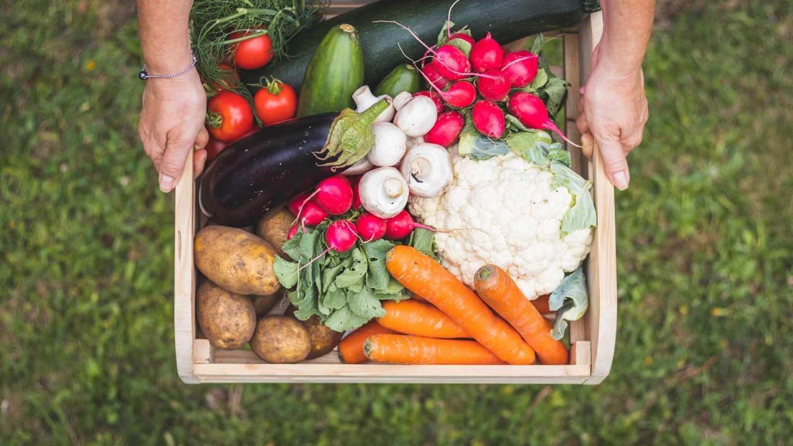 Alimento y salud - Condimentos y alimentación sostenible - 28/02/21 - Escuchar ahora