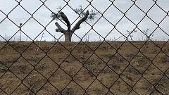 El bosque habitado - Justicia EcoSocial - 28/02/21