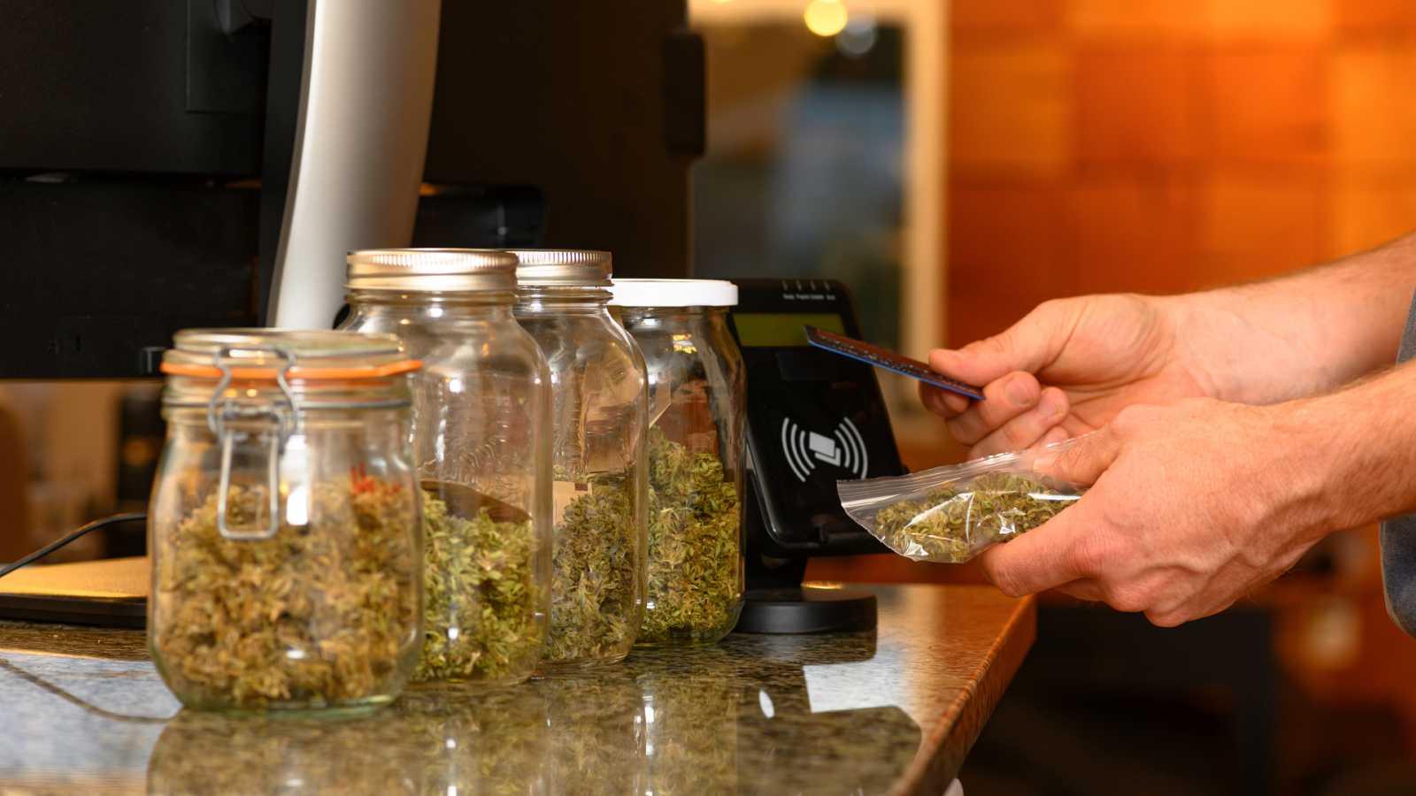 24 horas - Mesa del mundo: la legalidad del cannabis - Escuchar ahora
