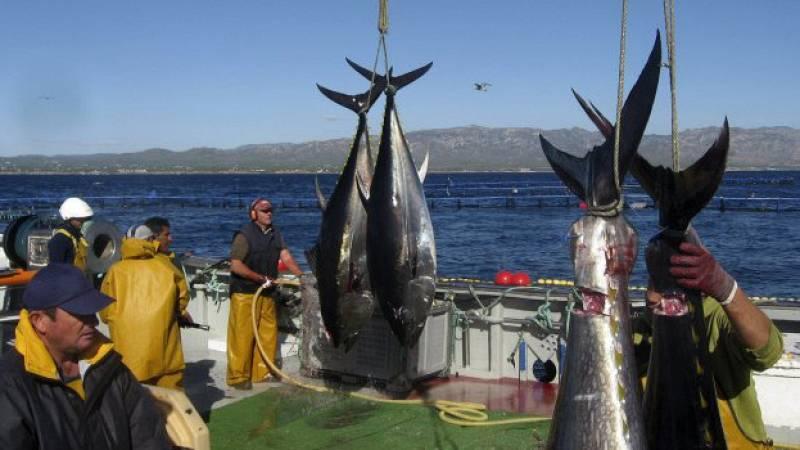 Españoles en la mar - Pescadores de Tarifa reclaman aumento de la cuota de atún rojo - 01/03/21 - escucha rahora