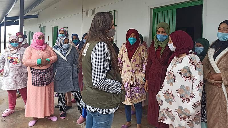 """14 horas - Temporeras de la fresa marroquíes en Huelva: """"Somos el principal sustento de nuestras familias"""" - Escuchar ahora"""