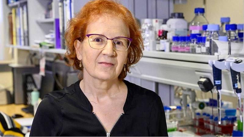 El gallo que no cesa - Femenino singular: Hoy con la viróloga Margarita del Val - Escuchar ahora