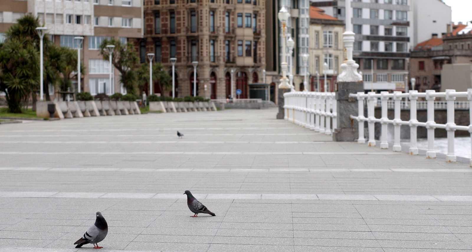 Reportajes Emisoras - Gijón - Nueva ordenanza de tráfico adaptada a la Agenda 20-30 - 04/03/21  - Escuchar ahora