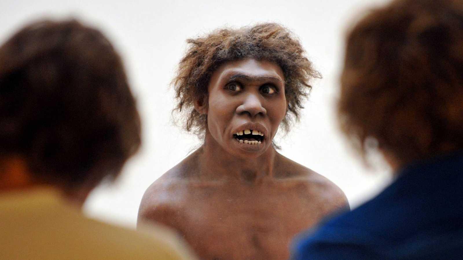 Retos científicos para el 2030; los neandertales hablaban; neurociencia y derechos humanos; el mes de las matemáticas; hidrógeno, el primer elemento; Graciela Salicrup - Escuchar ahora