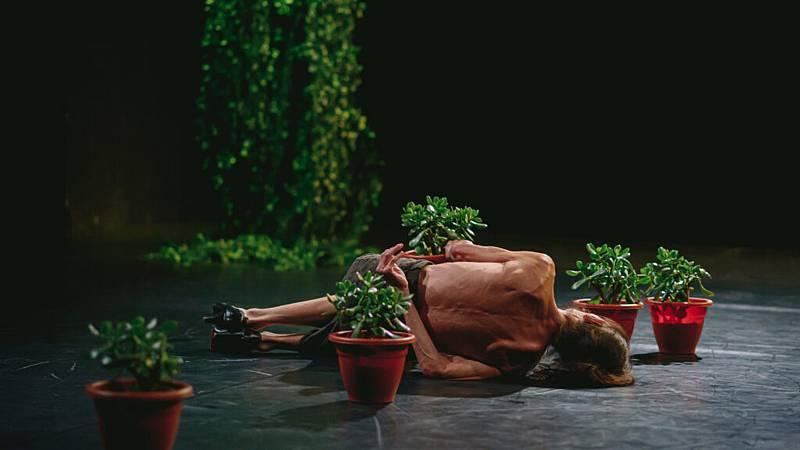 Hora América - Estreno de 'La miel', de la compañía Provisional Danza, en Madrid - escuchar ahora