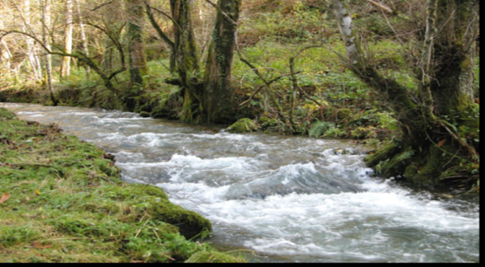 Caminantes - Río Pequeno - 02/04/21 - Escuchar ahora