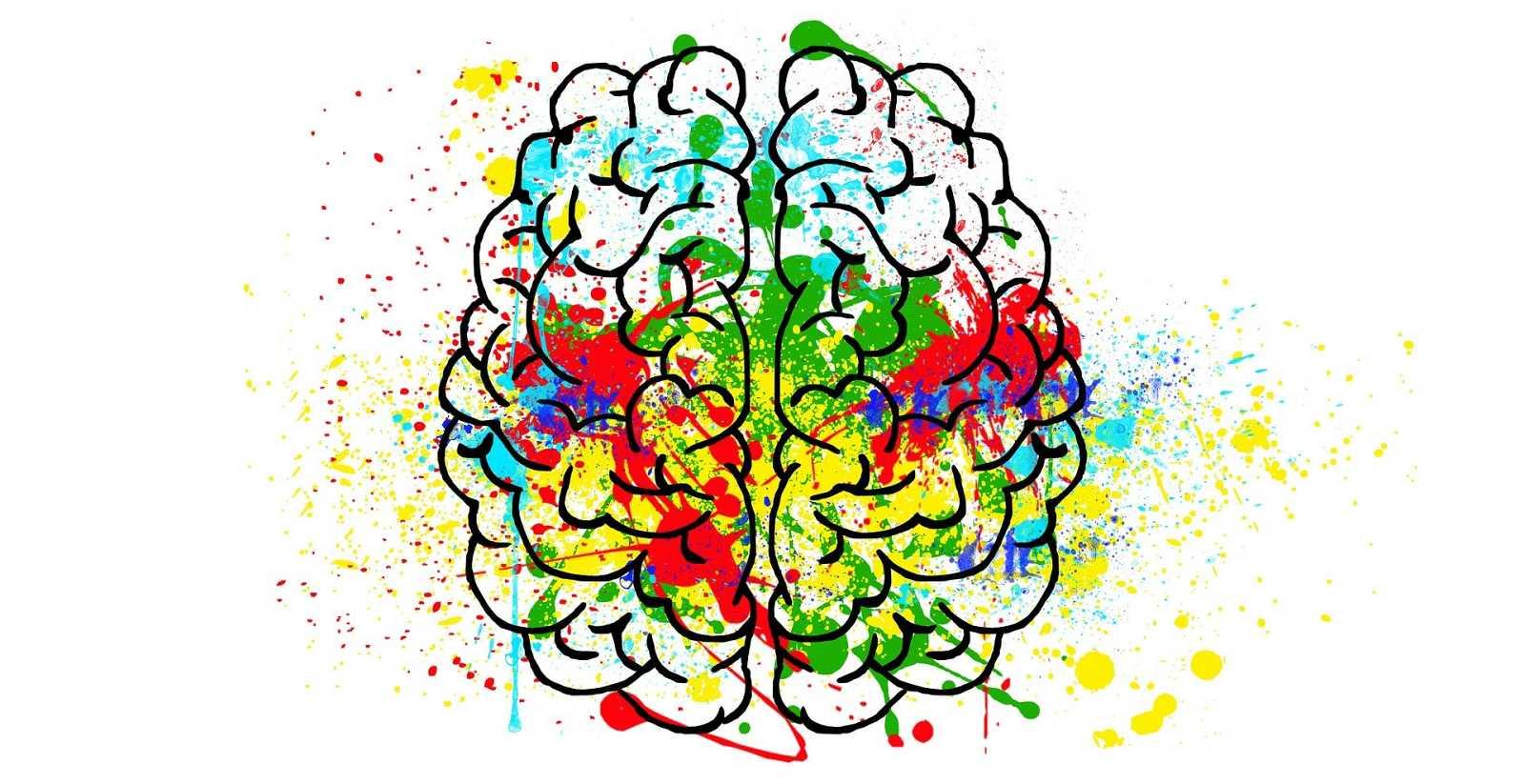 Les mentides poden destruir el nostre cervell?