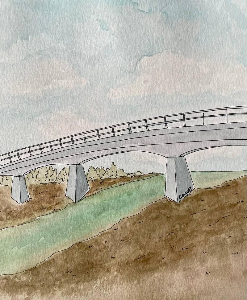 Wonderland- Relats de pandèmia: El pont del Pixota, Núria Reichardt - Escuchar ahora