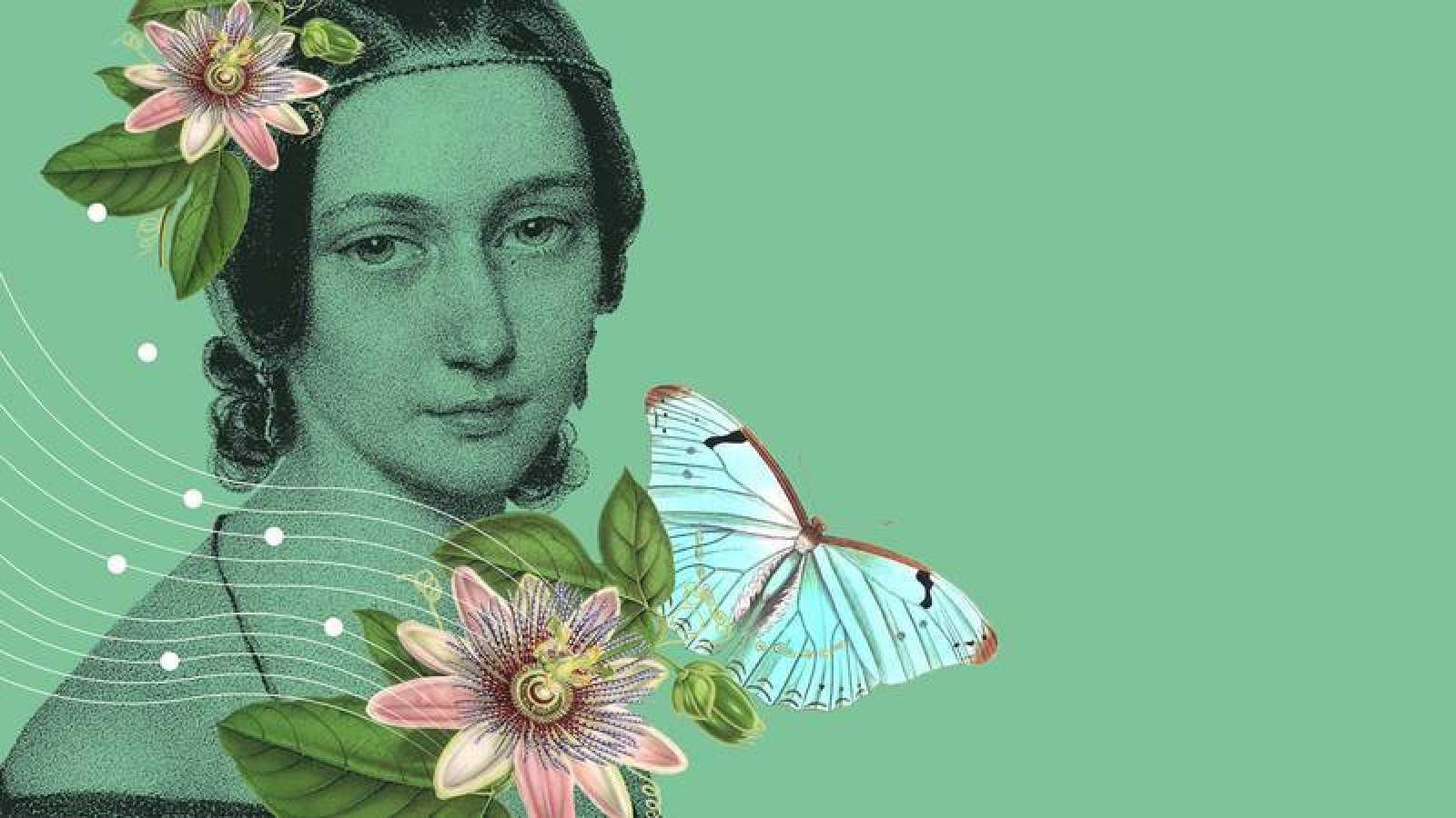 """Wonderland - Clara Schumann, """"Forasters vindran"""" i """"La millor nit de la teva vida"""" -Escuchar ahora"""