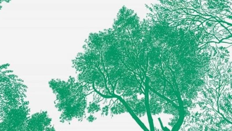 En Directe a Ràdio 4 - Vida verda - Comencem el Sant Jordi climàtic