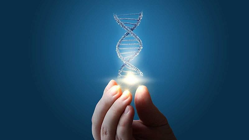 Després del col·lapse - Genoma humà: 20 anys desprès  - 13/04/21 - escoltar ara