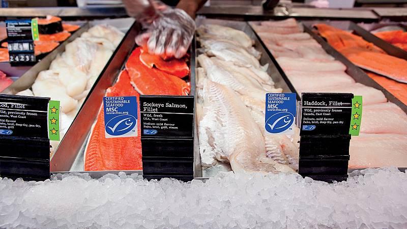 Alimento y salud - Etiqueta azul del pescado. Zanahoria - 18/04/21 - Escuchar ahora
