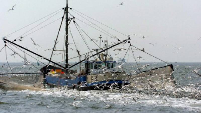 Españoles en la mar - La pesca eléctrica totalmente prohibida en aguas comunitarias - 16/04/021 - escuchar ahora