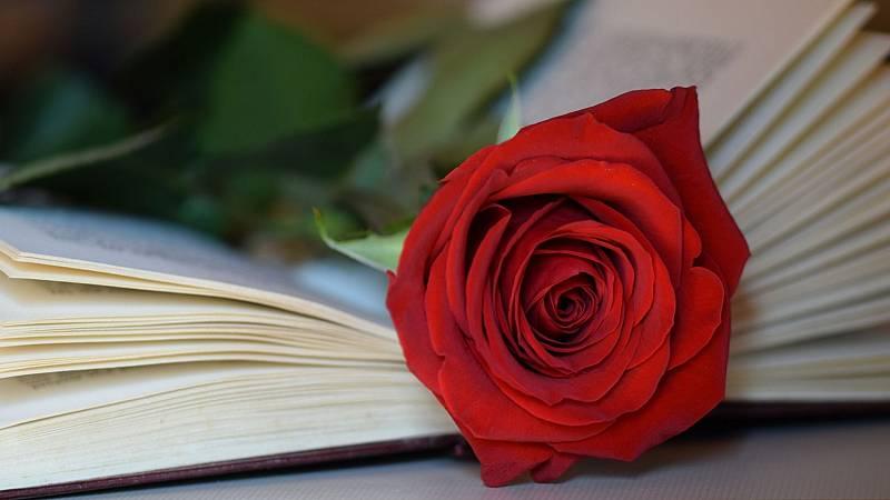 Las mañanas de RNE con Pepa Fernández - Una rosa y un libro por Sant Jordi - Escuchar ahora