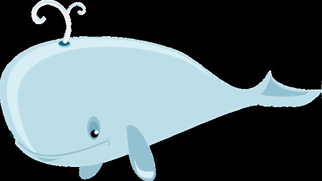 Transportes La ballena - Capítulo 2