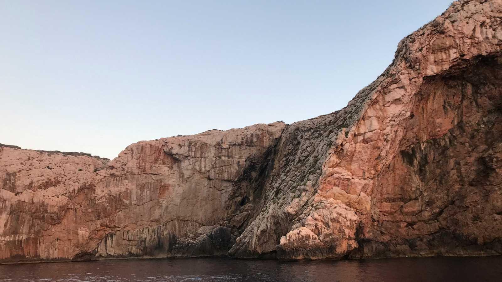 En Directe a Ràdio 4 - Vida verda - L'extinció progressiva del virot a les Balears