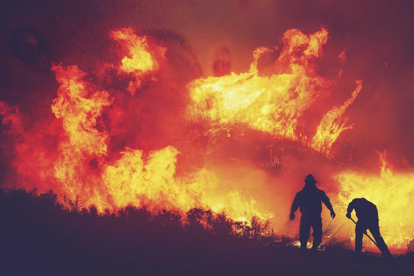 Vida Verda/Emergència Climàtica - El país que cal per fer front a les emergències que venen