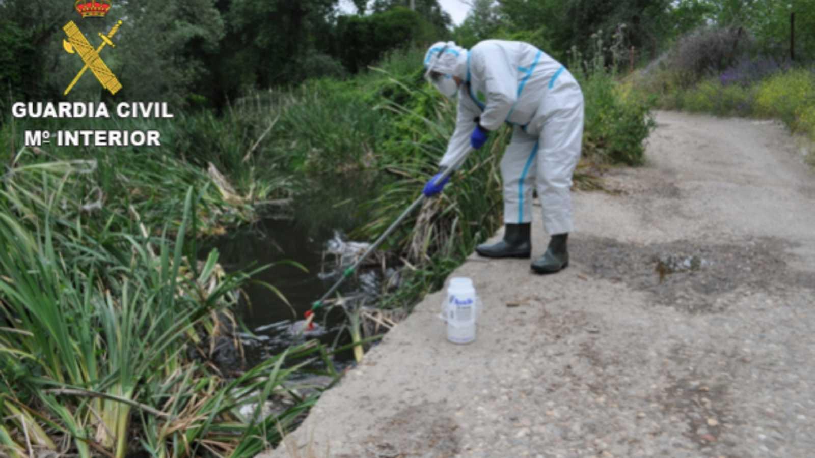 Reserva natural - Delitos contra la naturaleza en un año de pandemia - 29/04/21 - Escuchar ahora