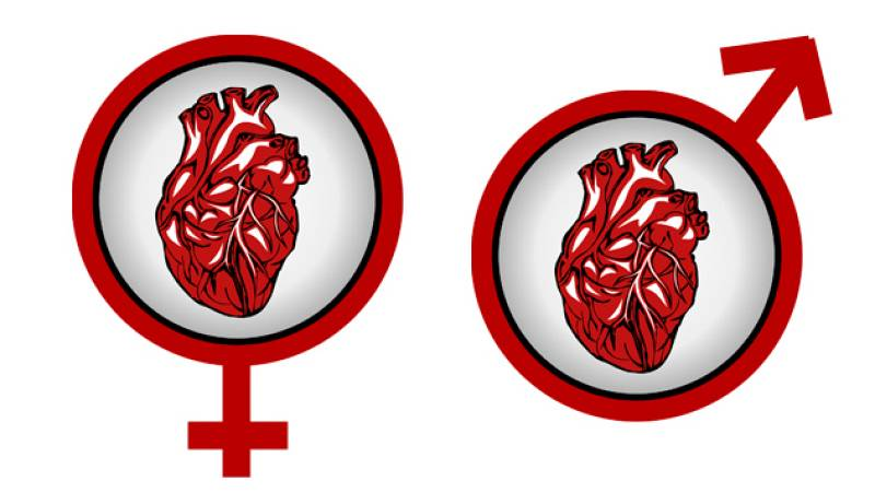 Diferencias entre un corazón femenino y uno masculino - escuchar ahora