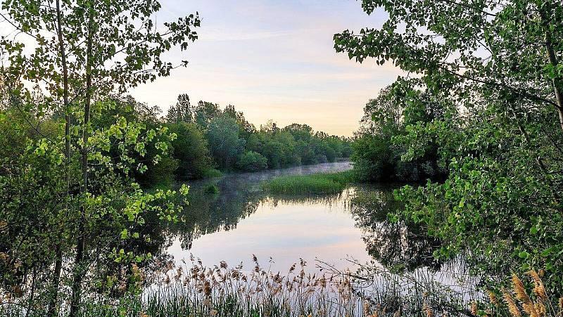 El bosque habitado - Revivir los paisajes. Con Raúl de Tapia - 09/05/21 - escuchar ahora