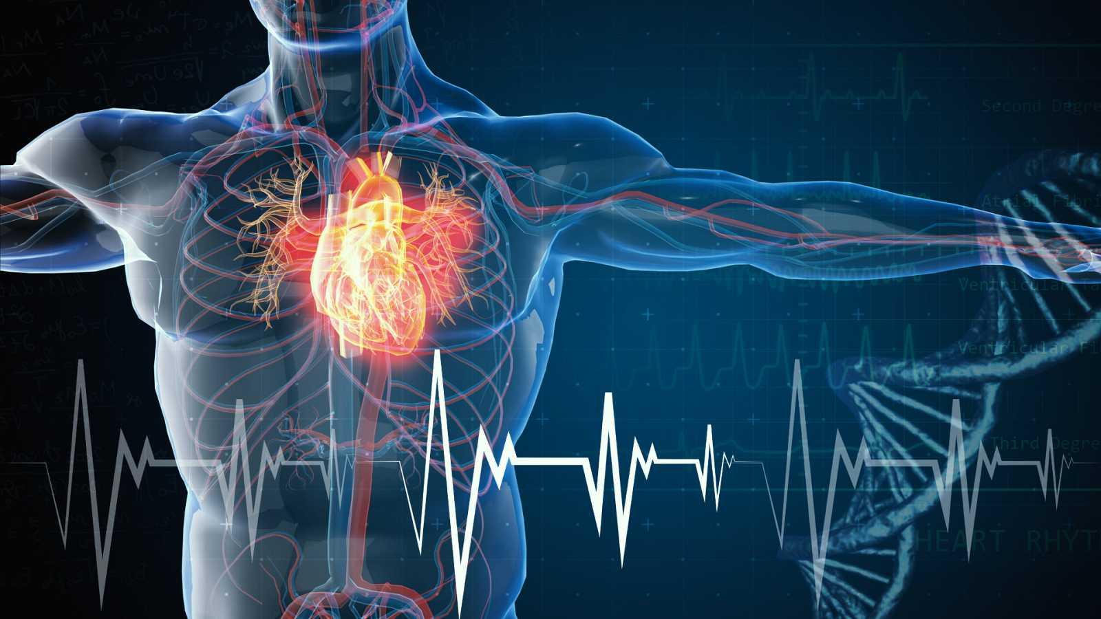 Entre probetas - Las patologías del corazón en todo su esplendor - 11/05/21 - Escuchar ahora