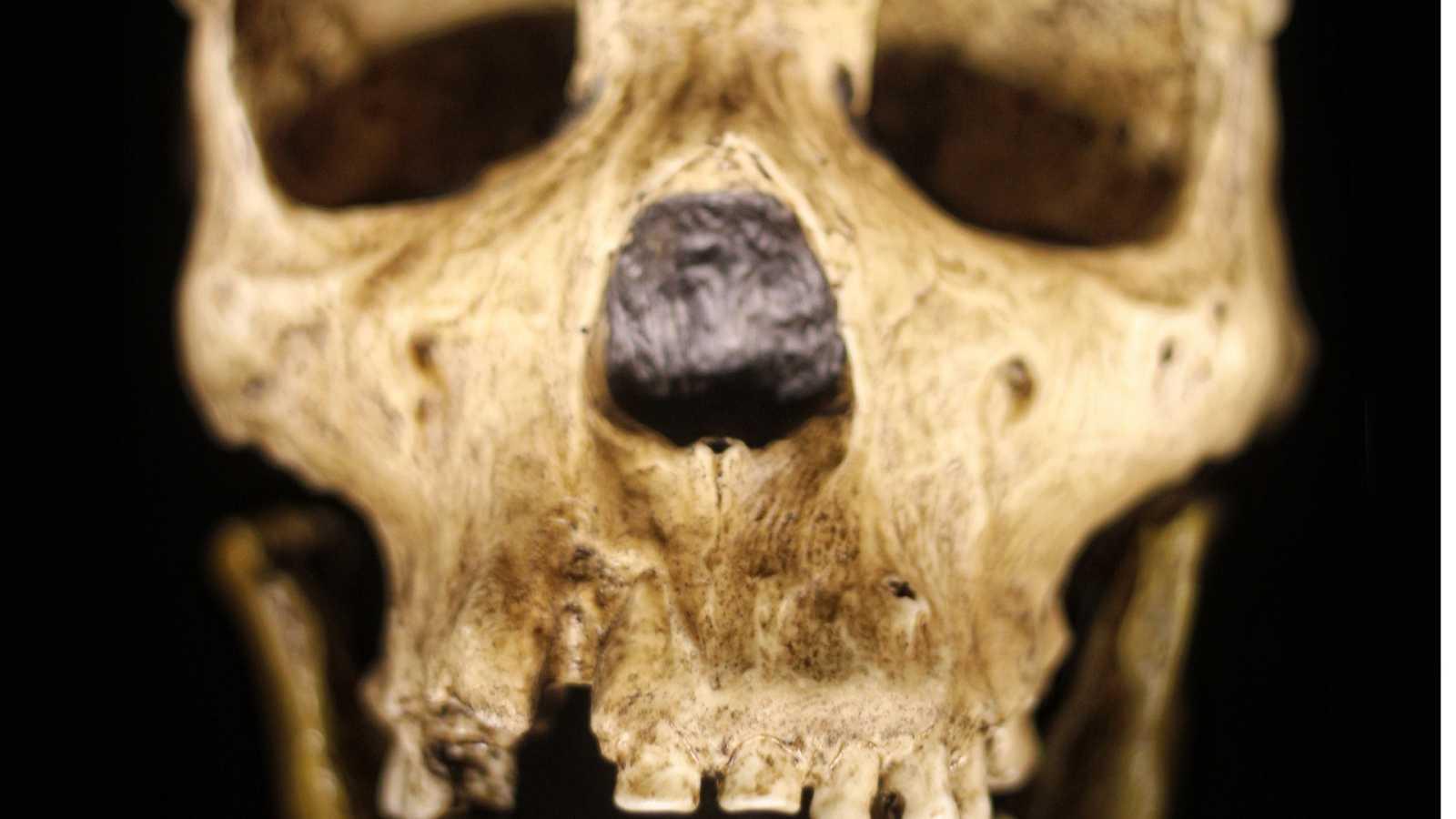 Gente despierta - Cosas de la vida - Mercedes Conde, conversando con neandertales - Escuchar ahora