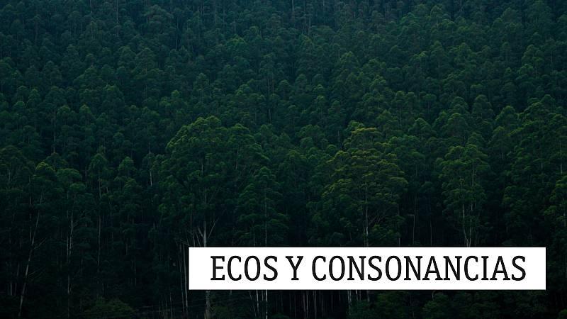 Ecos y consonancias - Rejoyce - 15/05/21 - escuchar ahora