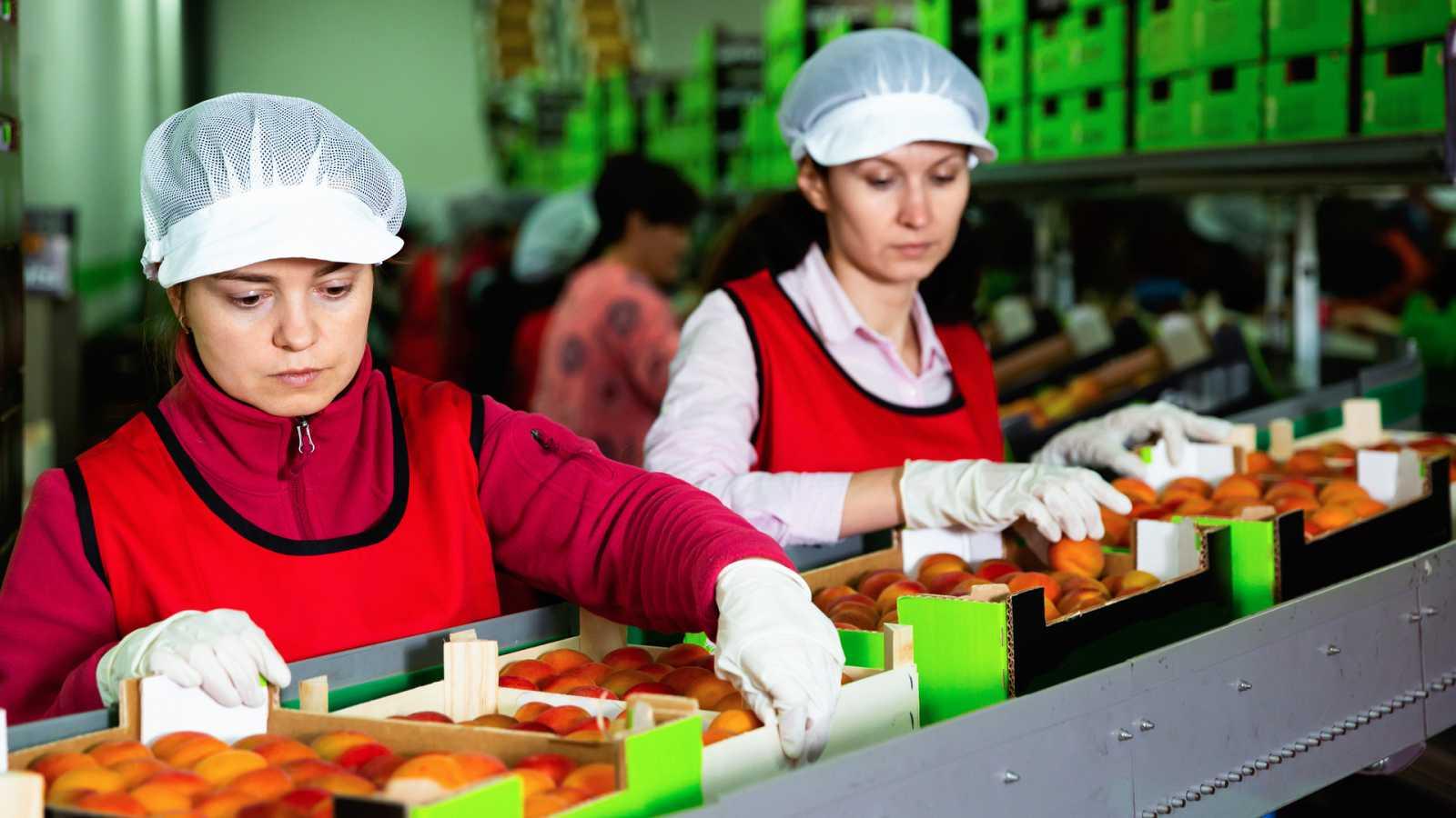 Más cerca - Exportaciones agroalimentarias en 2020 - Escuchar ahora