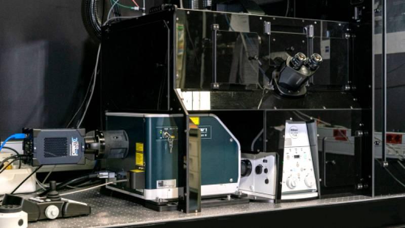 A golpe de bit - El microscopio más puntero llega a España - 03/06/21 - escuchar ahora