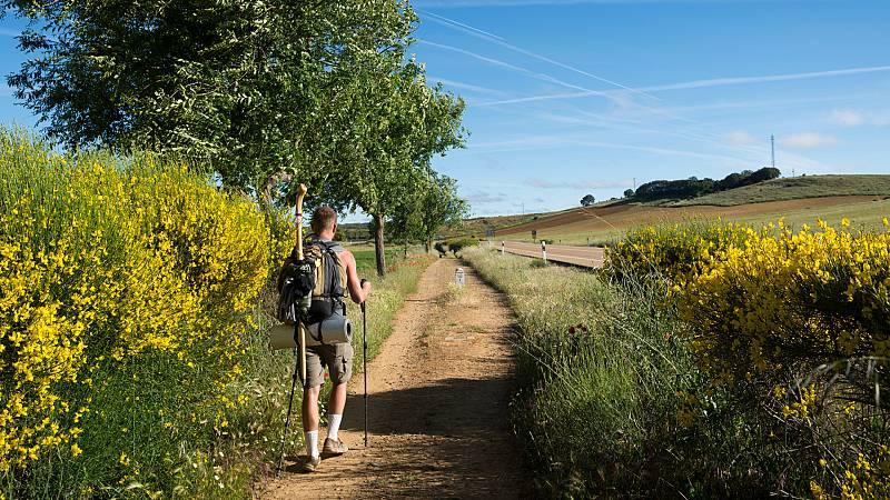 Reportajes Emisoras - Palencia - Tramo palentino del Camino de Santiago - 08/06/21 - Escuchar ahora