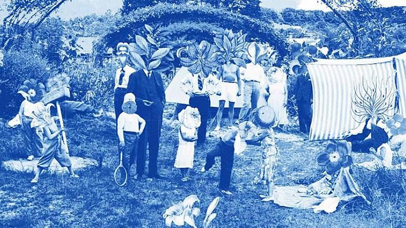 Vida verde - Cine y jardín - 12/06/21 - escuchar ahora