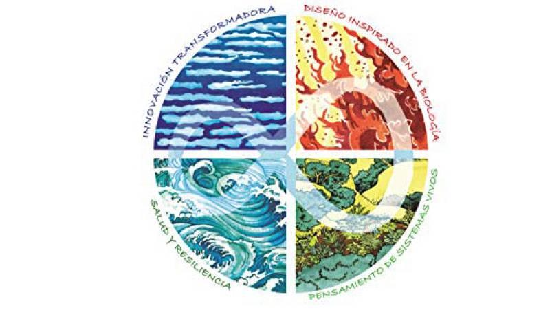 Vida verde - Agricultura y culturas regenerativas - 19/06/21 - escuchar ahora